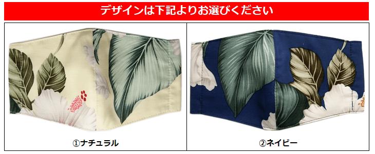 2種類のデザイン